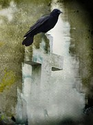Gothic Digital Art Posters - Perfect Perch Poster by Gothicolors With Crows
