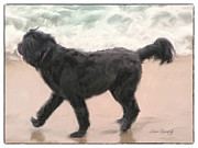 Dog Beach Card Framed Prints - Perfect Romp On The Beach Framed Print by Susan  Lipschutz