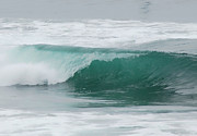 Wave Art Photos - Perfect Wave by Donna Blackhall