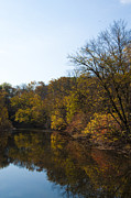 Perkiomen Creek In Autumn Print by Bill Cannon