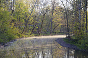 Bill Cannon - Perkiomen Creek in Spring