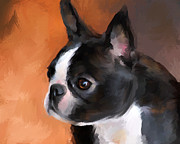 Dog Art Paintings - Perky Boston Terrier by Jai Johnson