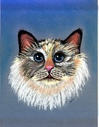Persian Cat Pastels Posters - Persian Cat Poster by Olde Time  Mercantile
