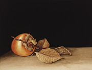 Fruit Still Life Framed Prints - Persimmon Framed Print by Jenny Barron