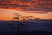 Blue Knob Mountain Prints - Persimmon Sunset Print by Deborah Scannell