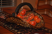 Persimmons Prints - Persimmons in a basket Print by Ana Lusi