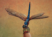 Fly Paintings - Pet Dragonfly by James W Johnson