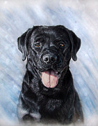Golden Retriever Art Pastels Prints - PET PORTRAIT 40x50 cm 15.7x19.7 in  Print by Ksenija Mijokovic