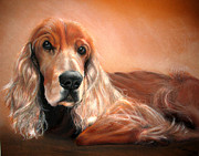 Cute Dogs Pastels - Pet Portrait A3 16x12 In Cocker Spaniel by Ksenija Mijokovic