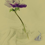 Art Glass Prints - Petal Print by Constance Fein Harding
