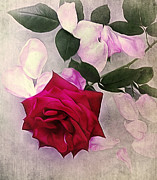 Rose Petals Framed Prints - Petals and a Rose - Still Life Framed Print by Kaye Menner