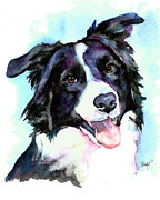 Collie Painting Framed Prints - Petey Border Collie Framed Print by Christy  Freeman