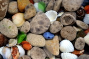 Beach Glass Posters - Petoskey Stones lll Poster by Michelle Calkins