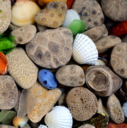 Glass Pebble Prints - Petoskey Stones V Print by Michelle Calkins