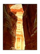 Petra Originals - Petra by Dallas  Scouton-Johnson