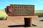 Beauty In Nature Framed Prints - Petrified Forest National Park Entrance Sign Framed Print by Shawn OBrien