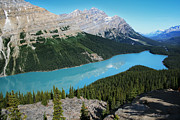 """reflection Photographs"" Posters - Peyto Lake Alberta Poster by Darlene Konieczny"