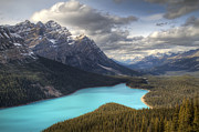 Turquoise Mountain Lake Prints - Peyto Lake Banff National Park Print by Pierre Leclerc