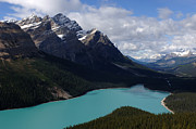 Travel Alberta Prints - Peyto Lake Print by Bob Christopher