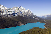 Turquoise Mountain Lake Prints - Peyto Lake Print by Kevin Miller