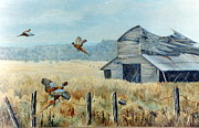Lynne Parker - Pheasants Retreat