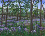 Phlox Painting Framed Prints - Phlox Fields Framed Print by Heather Imlay-Pospiech