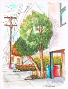 Cans Paintings - Phone pole in Venice Canals - California by Carlos G Groppa