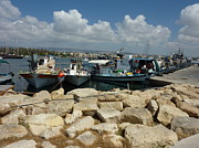 David Hawkes - Photo Paphos Harbour...