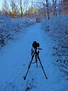 Career Digital Art - Photography In The Winter by Dan Sproul