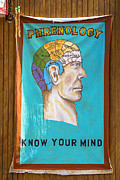 Letter Framed Prints - Phrenology Framed Print by Garry Gay