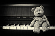 Piano Bear Print by Tim Gainey