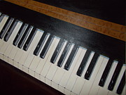 Piano Keys Painting Originals - Piano Keys by Terri Enfield