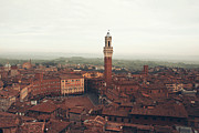 Stephanie Cooke - Piazza del Campo