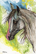 Horse Drawings - Piber polish arabian horse watercolor painting 3 by Angel  Tarantella