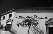 Travel Sightseeing Prints - Picasso Building. Benalmadena. Black and White Print by Jenny Rainbow