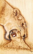 Animal Art Pyrography Prints - Pick Me UP Print by Roger Storey