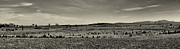 Army Of The Potomac Photos - Picketts Charge from Seminary Ridge in Black and White by Joshua House