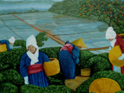Tea Originals - Picking the Green Tea by Anthony Dunphy