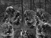 LeeAnn McLaneGoetz McLaneGoetzStudioLLCcom - Picky Eaters in the moonlight