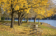 Park Benches Prints - Picnic area Blue Lake park Oregon. Print by Gino Rigucci