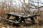 Off The Beaten Path Photography - Andrew Alexander - Picnic Table