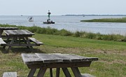 Park Benches Photos - Picnic Tables on the Sound by Cathy Lindsey