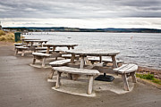 Empty Chairs Posters - Picnic tables Poster by Tom Gowanlock