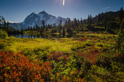 Washington Prints Prints - Picture Lake Basin Print by Puget  Exposure