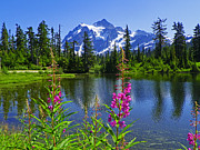 Mount Washington Mixed Media Prints - Picture Lake - Mount Shuksan Washington Print by Photography Moments - Sandi