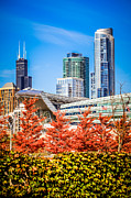 Chicago Prints - Picture of Chicago in Autumn Print by Paul Velgos