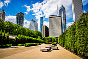 Millennium Park Prints - Picture of Chicago Skyline with Millennium Park Trees Print by Paul Velgos