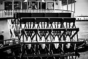 Paddle Metal Prints - Picture of Natchez Steamboat Paddle Wheel in New Orleans Metal Print by Paul Velgos