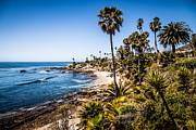 Laguna Beach Posters - Picture of Orange County California Poster by Paul Velgos