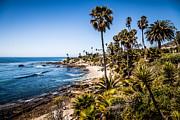 Paul Velgos - Picture of Orange County California